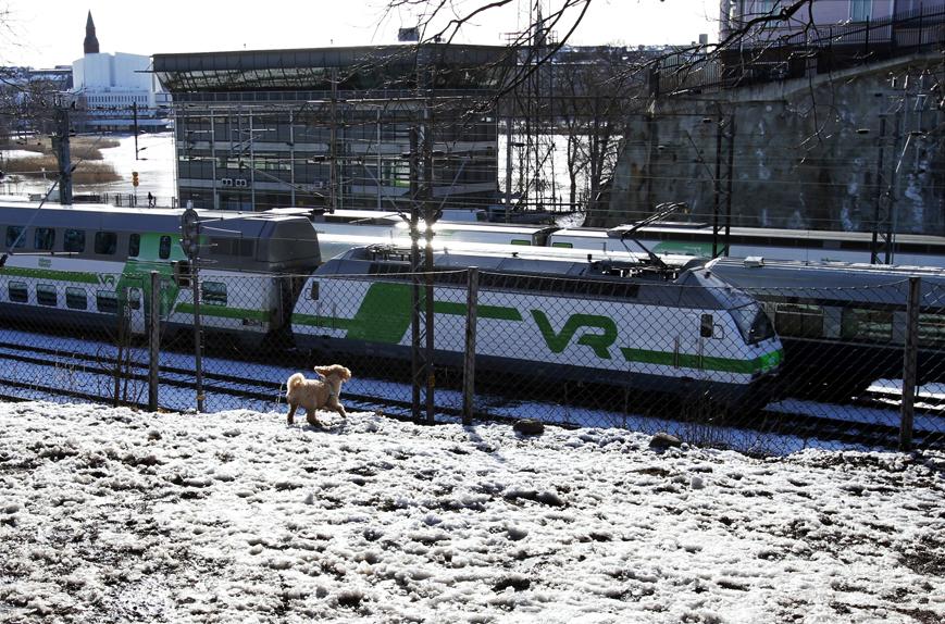 Koirapuisto Helsinki